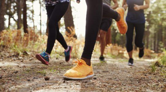 Benefits of Trails